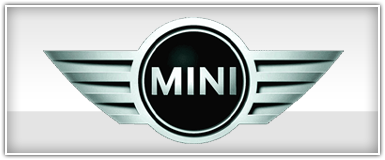 Mini Cooper Dash Install Kit