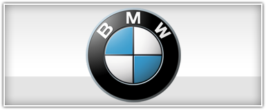 BMW Installation Harness