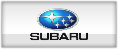 Subaru Installation Harness